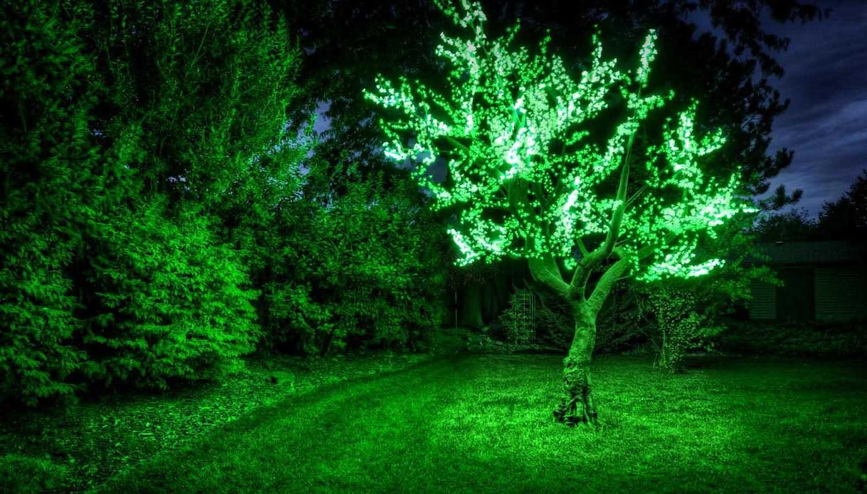 зеленое светодиодное дерево