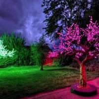 Светодиодные деревья – роскошь уличного декора